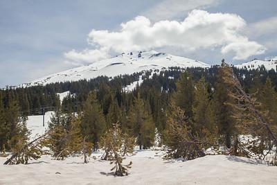Bachelor Mountain IMG_1089