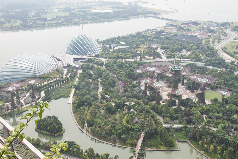 Gardens by the Bay South