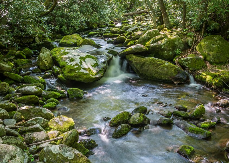 Smokey Mountains Rocky Stream