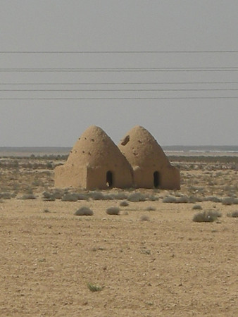 bee-hive shaped houses on the road between Tadmore and Homs