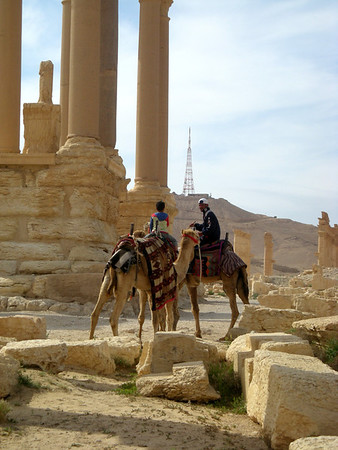waiting for customers for a camel back tour at Palmyra