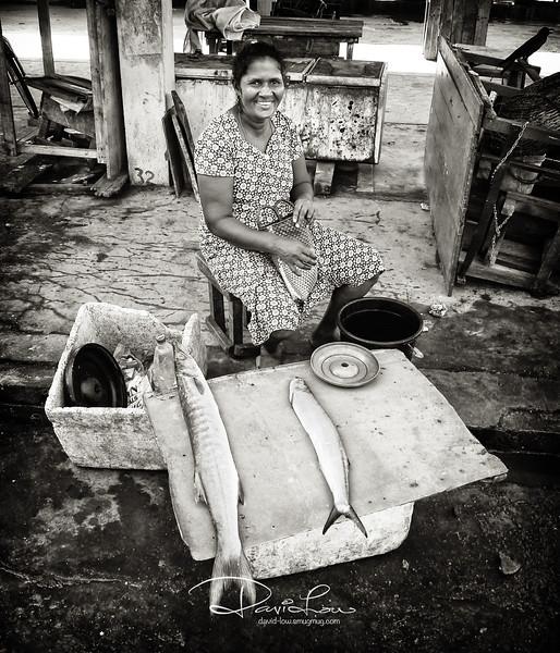 Negombo fish market.
