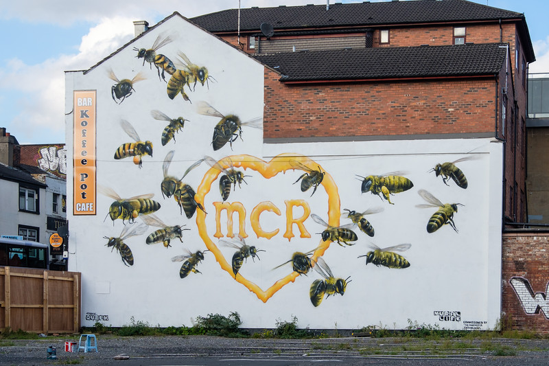 Bee mural by Qubek, Oldham St., Manchester Northern Quarter