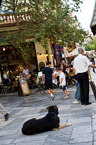 Plaka - main tourist area with lots of churches, Museums and souvenir shops around.