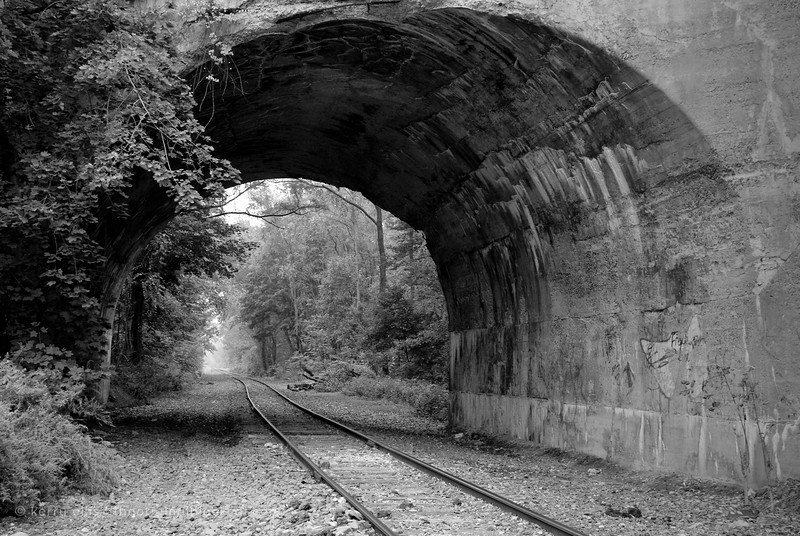 Tracks still in use run under the strange, abandoned railway bridge.