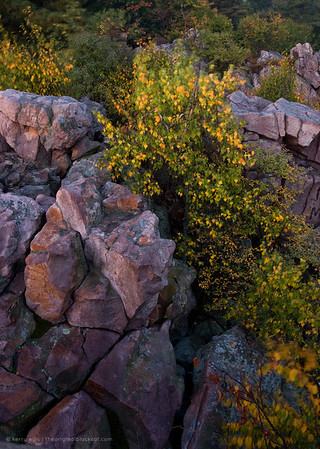 The view from atop Split Rock at sunrise.