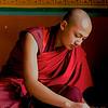 BHUTANESE NOVICE, PUNAKA DZONG (MONASTERY)