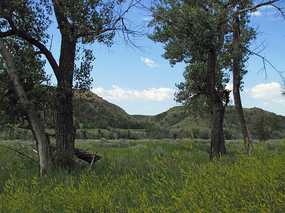 Theodore Roosevelt National Park, North Dakota (7)