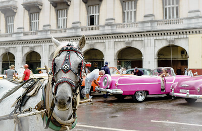 Cool Rides In Havana Parque Central