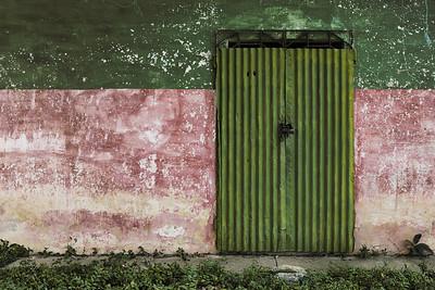 'Doors of Green'