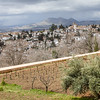 Granada landscape