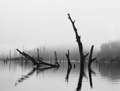 Lake Kenyir, Malaysia