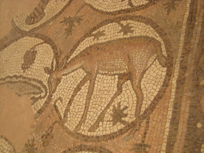 Mosaics at Petra, Jordan