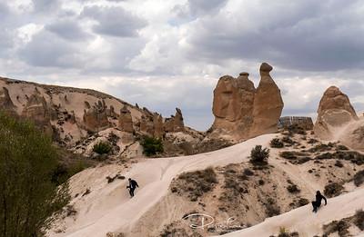 Rock camel