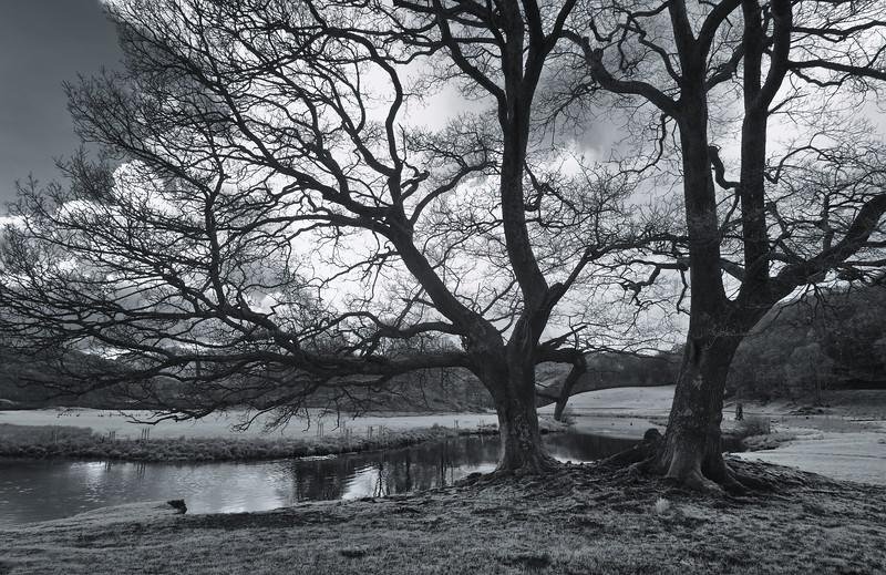 River Brathay<br /> Elterwater