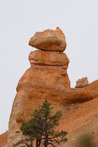 Bryce Canyon IMG_1641