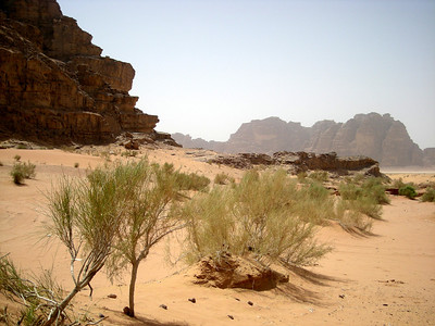 Wadi Rum Desert of Mountains, Jordan