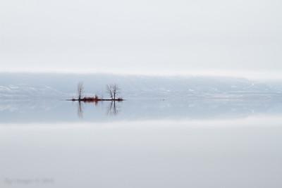 Foggy reflections.
