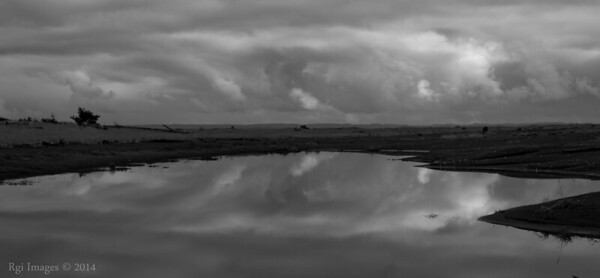 Reflected clouds, Damon Point, Ocean Shores, WA