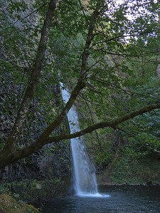 Horsetail Falls, Columbia River Gorge, OR