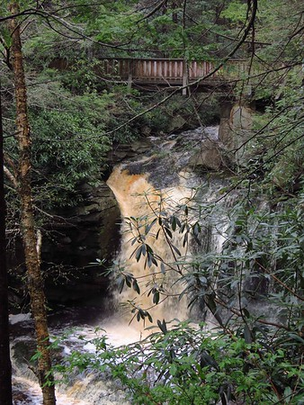 Blackwater Falls SP, WV (4)