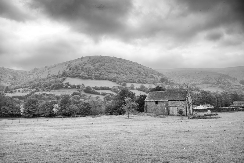 Llanthonytreats 2