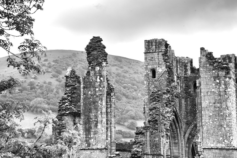 Llanthonytreats 24
