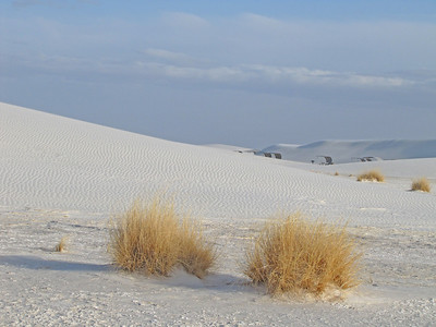 White Sands National Monument, New Mexico (6)