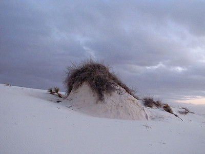 White Sands National Monument, New Mexico (13)