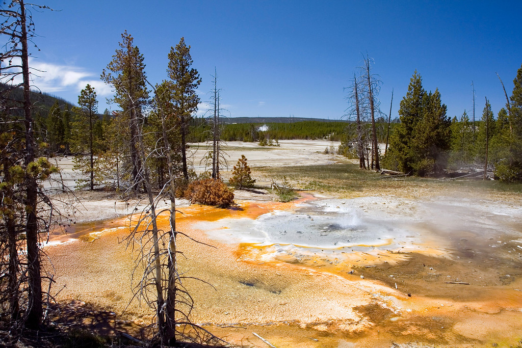 Yellowstone National Park, Wyoming.