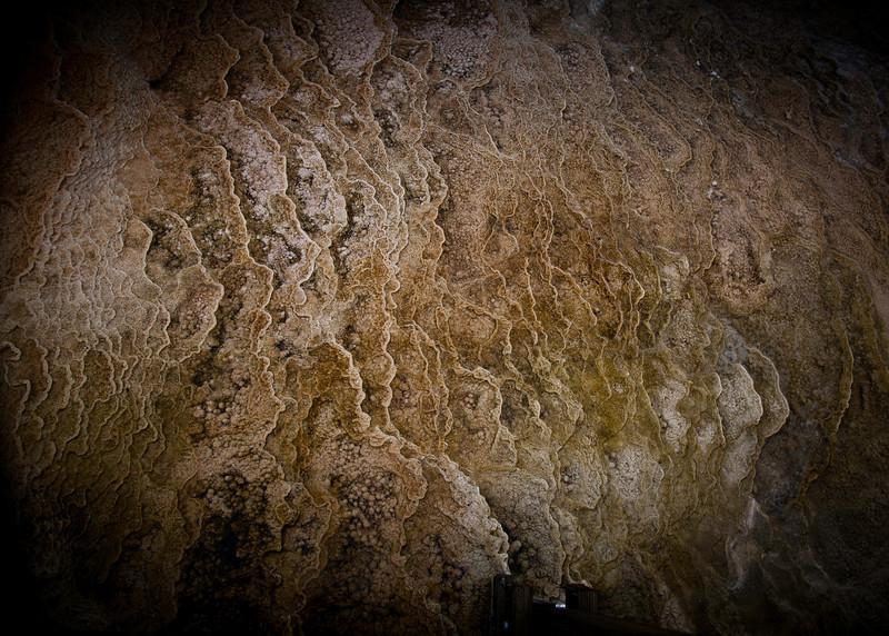 Yellowstone National Park<br /> May 2013