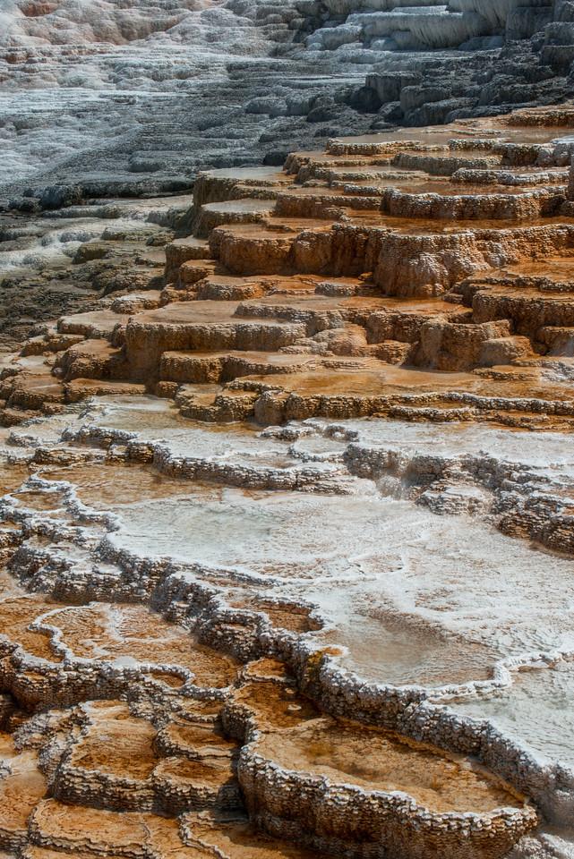 https://themaryphotographer.smugmug.com/Galleries/Travel/Yellowstone-and-Tetons/i-JTKx2fn/buy