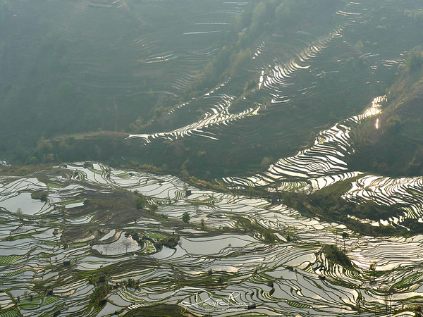 Laohuzui terrace (tiger's mouth)