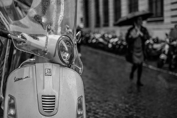 © Camerashy Photography