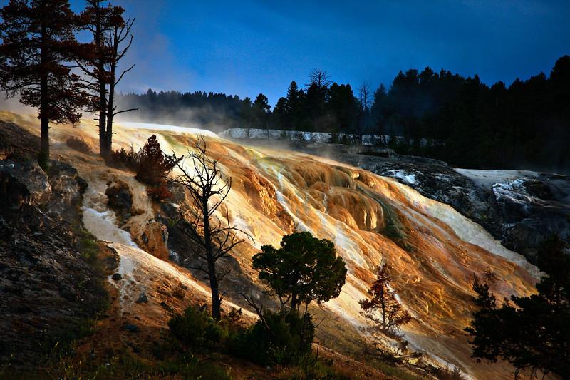 Yellowstone National Park, Mammoth Hot Sping at Dawn