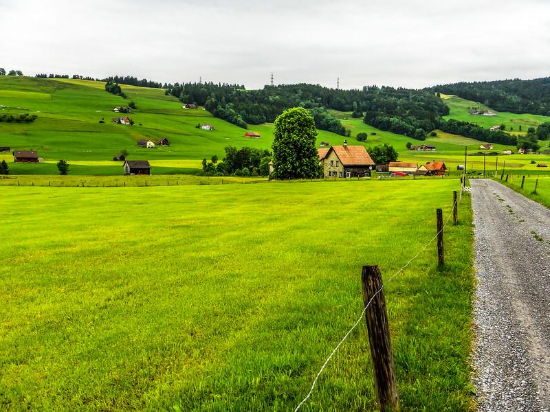 Swiss012.jpg