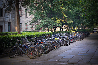 row of bikes parked behind apartment building