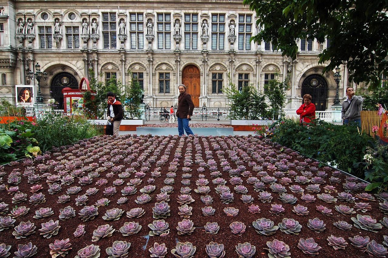"""""""Lotus Chasing Hipster"""" - Paris, France"""