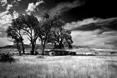 Abandoned Bardyard in Montana under Summer Blue Sky