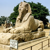 The Alabaster Sphinx (1400 BCE) - Memphis, Giza