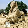The Alabaster Sphinx (1400 BCE) - Memphis, Giza