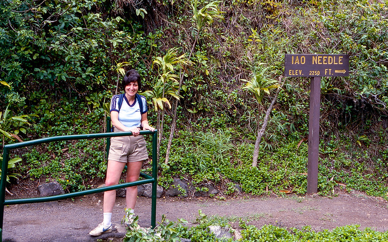 Iao Valley is located in West Maui - 1984