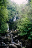 Killarney National Park - Torc Waterfalls