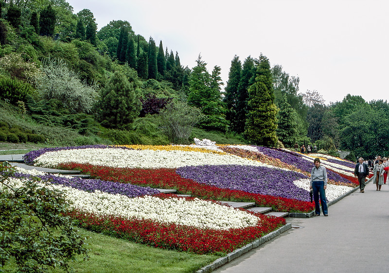 Mainu - Flower beds with 1000's of tulips
