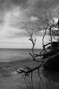 Barbados-0753
