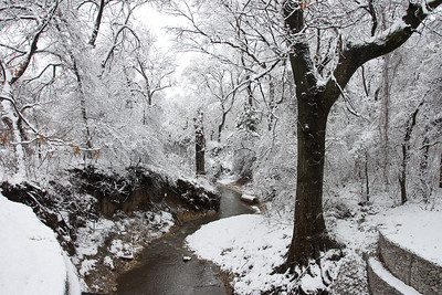 20100212-Snow-0036