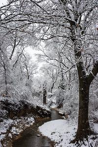 20100212-Snow-0035