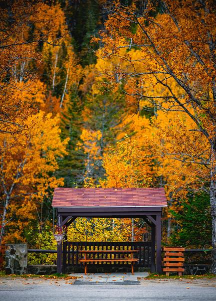 Fall in Saguenay | Québec
