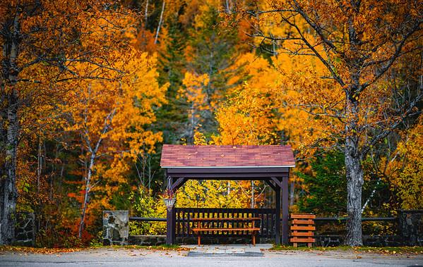 Autumn in Saguenay | Québec
