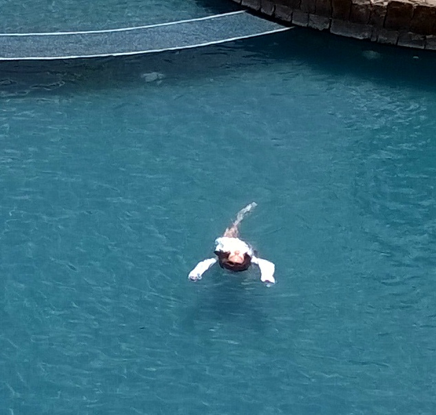 Swimming on her back.